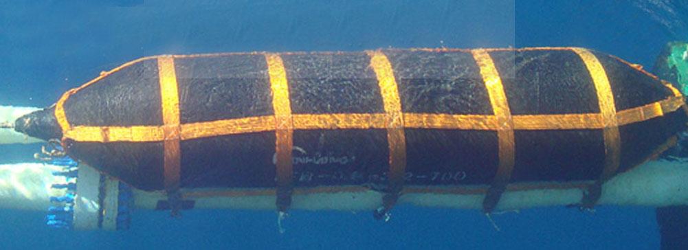 水囊保护网套